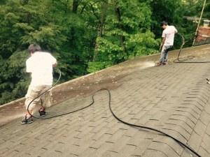 Castros-roof-cleaning-ct-12 (1)