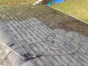 Castros-roof-cleaning-ct-17