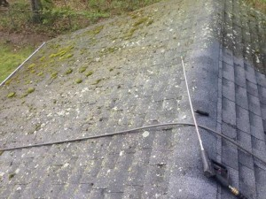 Castros-roof-cleaning-ct-7